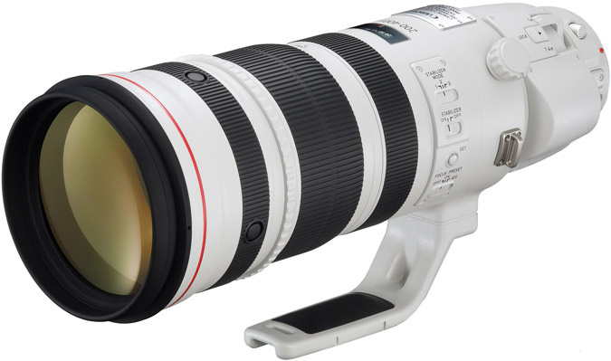 Canon 200-400mm F4 Zoom Lens
