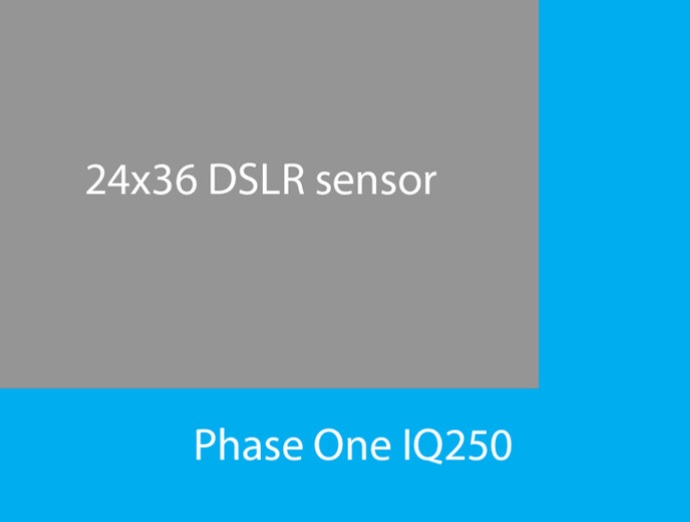 Phase One IQ250 sensor size comparison