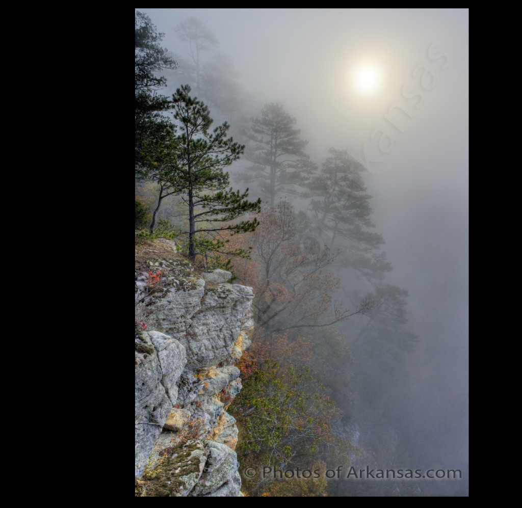 New version of Foggy Morning View with Copyrighting